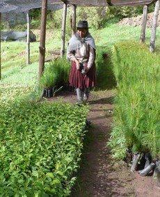 Cajamarca 2.jpg