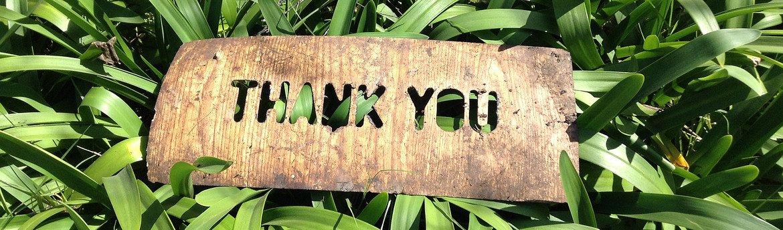 thank-you-1243804.jpg