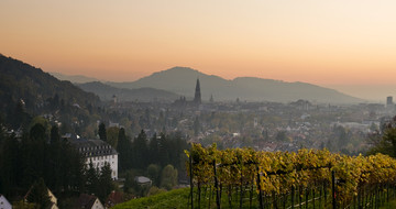 Sicht auf Freiburg